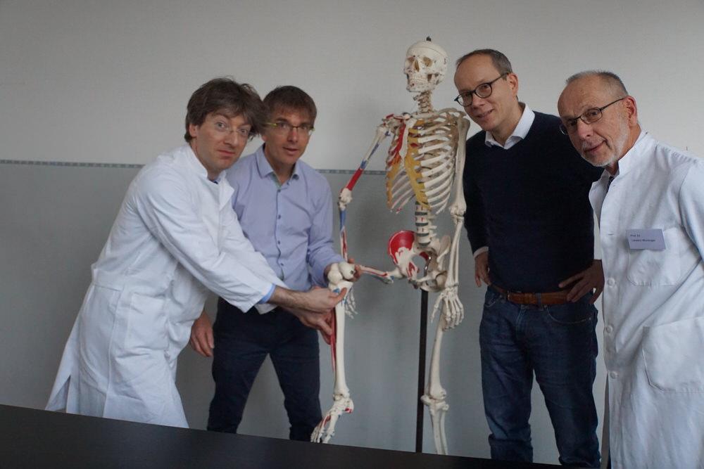 Anatomie & Sonographie der Muskulatur - Child&Brain – Kurse ...